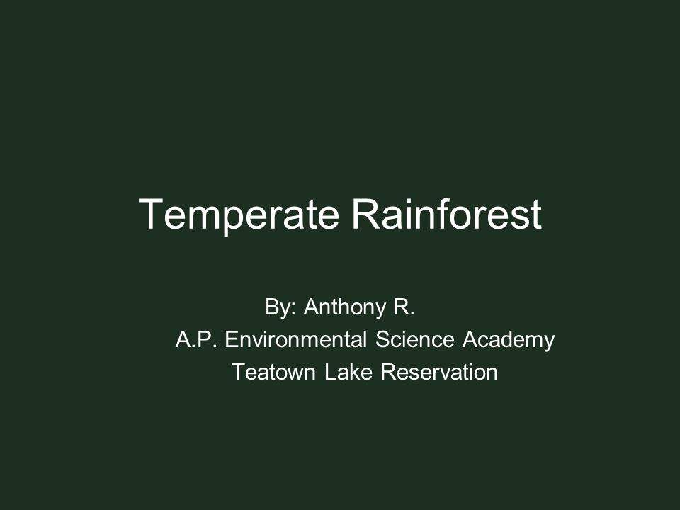 Temperate Rainforest By: Anthony R. A.P. Environmental Science Academy Teatown Lake Reservation