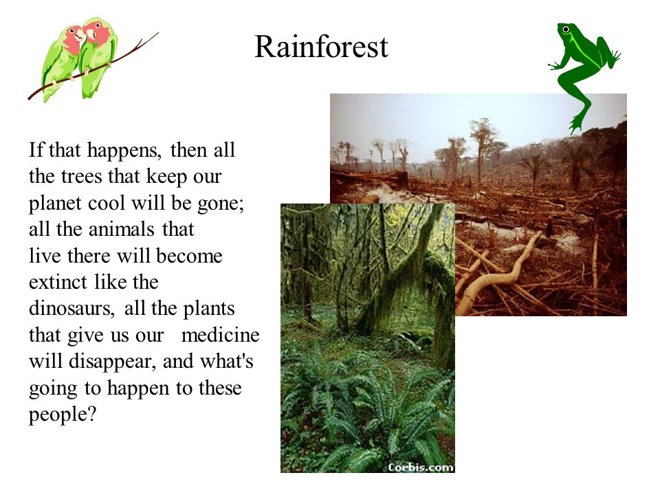 If that happens, then all the trees that keep our planet cool will be gone; all the animals that live there will become extinct like the dinosaurs, all the plants that give us our medicine will disappear, and what s going to happen to these people.