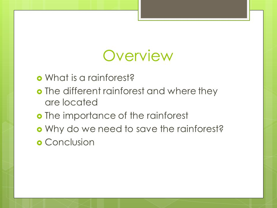 Overview  What is a rainforest?  The different rainforest and where they are located  The importance of the rainforest  Why do we need to save the