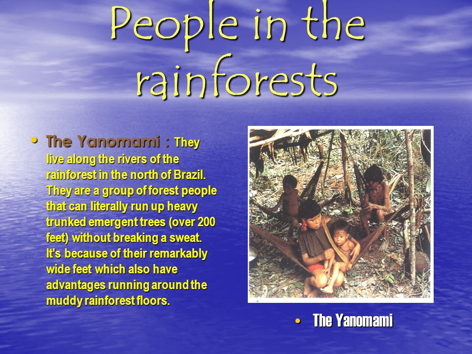 People in the rainforests Peoples: More than fifty million people live in the rainforests of the world. Peoples: More than fifty million people live i