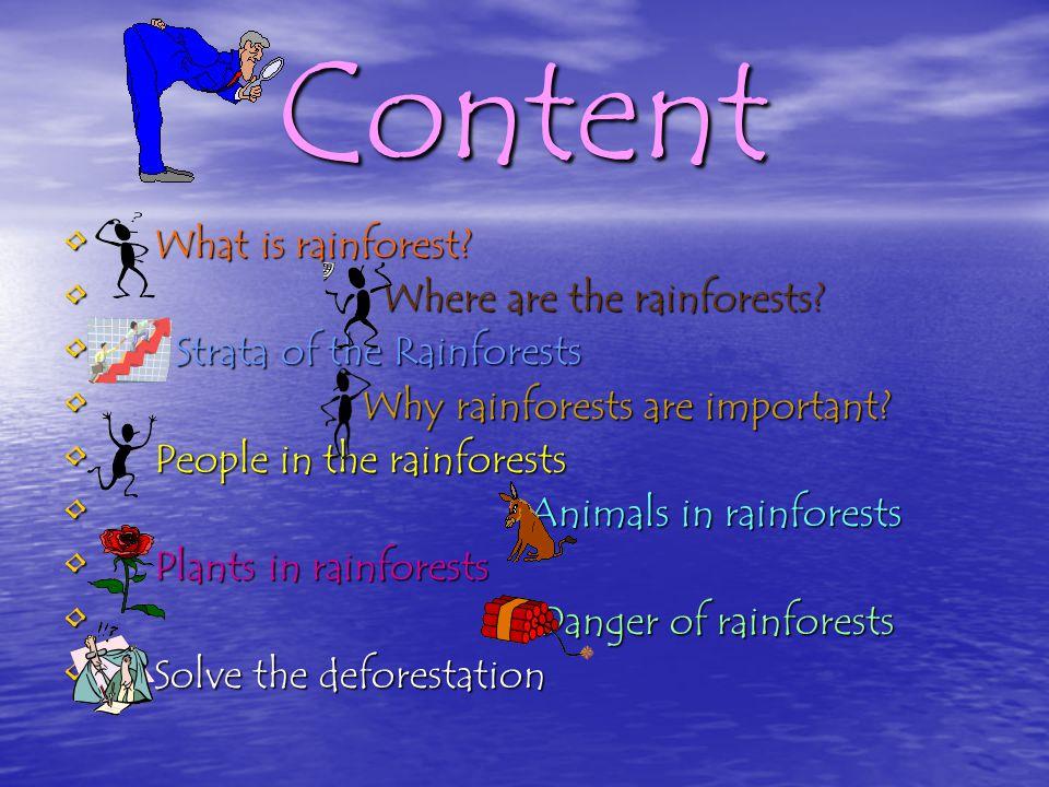 Rainforest -Geo.