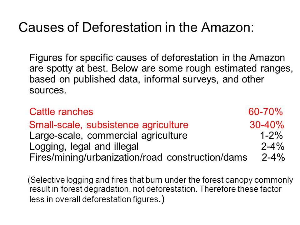 Causes of Deforestation in the Amazon: Figures for specific causes of deforestation in the Amazon are spotty at best.