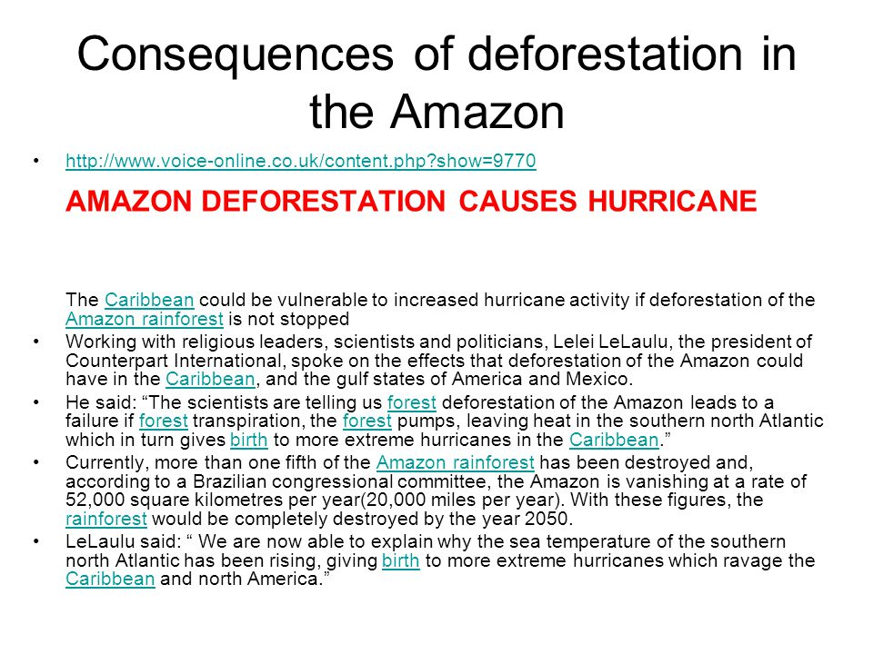 Consequences of deforestation in the Amazon http://www.voice-online.co.uk/content.php show=9770 AMAZON DEFORESTATION CAUSES HURRICANEhttp://www.voice-online.co.uk/content.php show=9770 The Caribbean could be vulnerable to increased hurricane activity if deforestation of the Amazon rainforest is not stoppedCaribbean Amazon rainforest Working with religious leaders, scientists and politicians, Lelei LeLaulu, the president of Counterpart International, spoke on the effects that deforestation of the Amazon could have in the Caribbean, and the gulf states of America and Mexico.Caribbean He said: The scientists are telling us forest deforestation of the Amazon leads to a failure if forest transpiration, the forest pumps, leaving heat in the southern north Atlantic which in turn gives birth to more extreme hurricanes in the Caribbean. forest birthCaribbean Currently, more than one fifth of the Amazon rainforest has been destroyed and, according to a Brazilian congressional committee, the Amazon is vanishing at a rate of 52,000 square kilometres per year(20,000 miles per year).