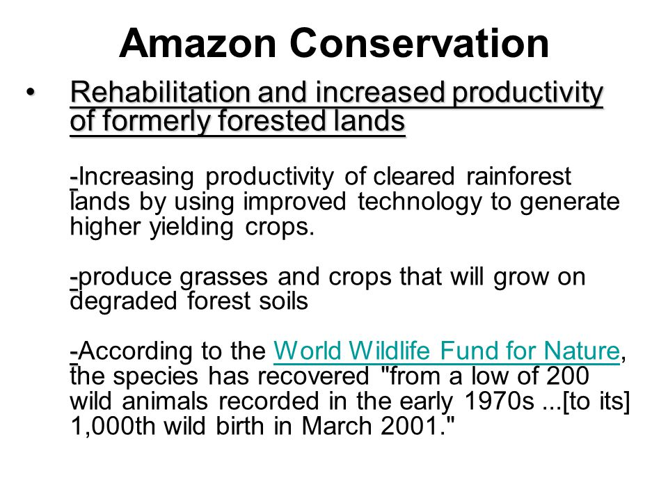 Amazon Conservation Rehabilitation and increased productivity of formerly forested lands - - -Rehabilitation and increased productivity of formerly forested lands -Increasing productivity of cleared rainforest lands by using improved technology to generate higher yielding crops.