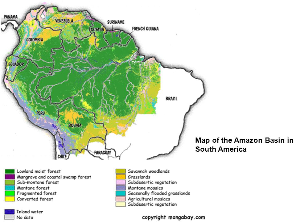 Map of the Amazon Basin in South America