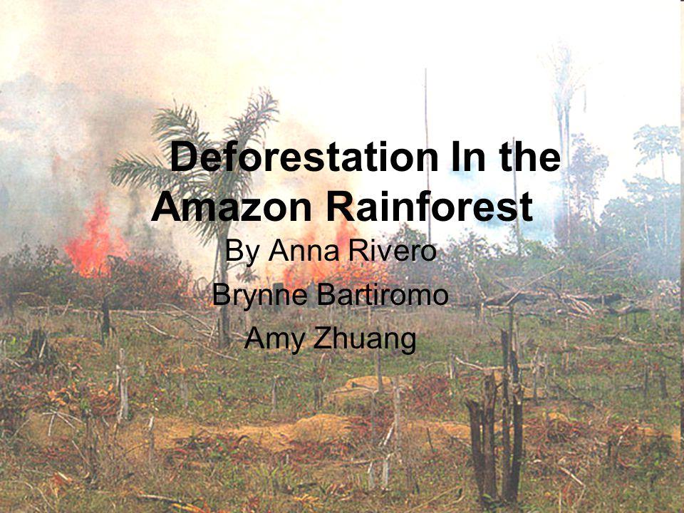 Deforestation In the Amazon Rainforest By Anna Rivero Brynne Bartiromo Amy Zhuang