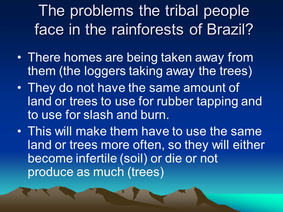 The problems the tribal people face in the rainforests of Brazil? There homes are being taken away from them (the loggers taking away the trees) They