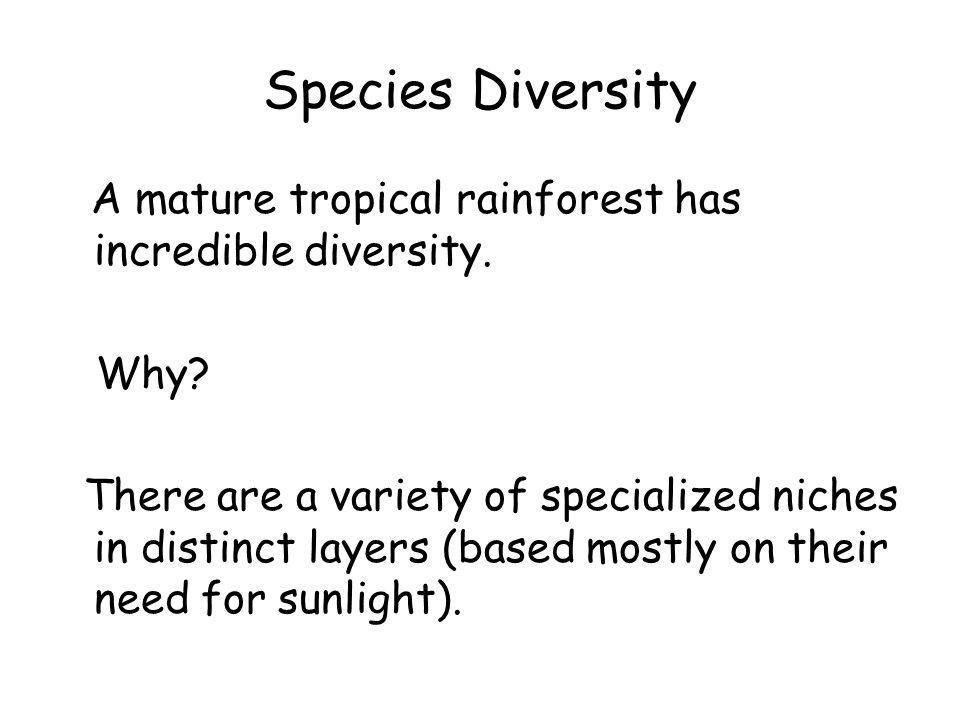 Species Diversity A mature tropical rainforest has incredible diversity.