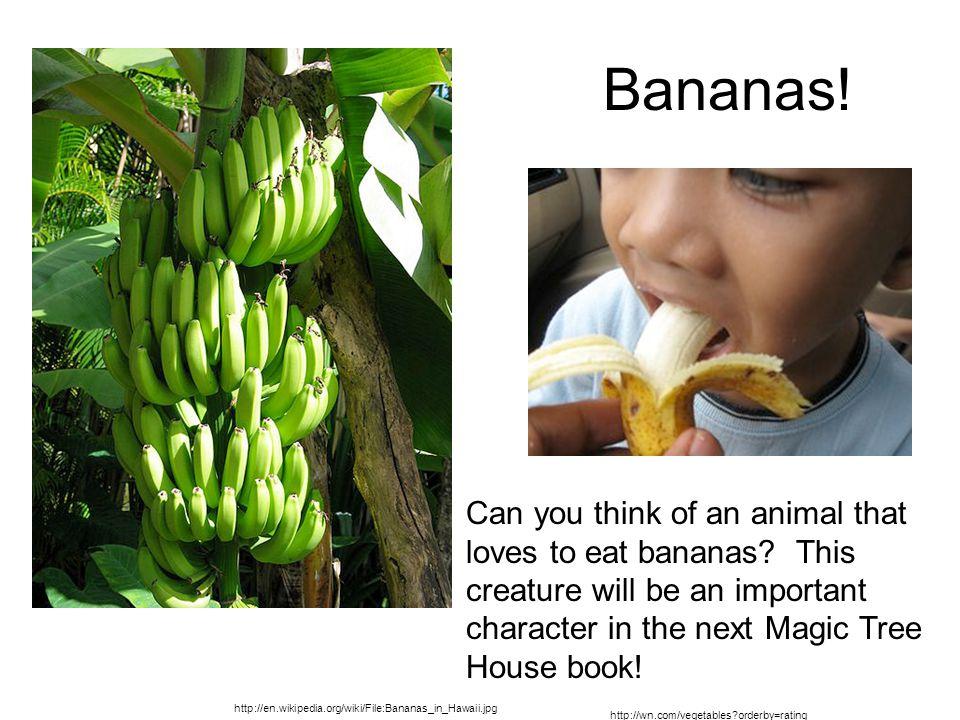 http://en.wikipedia.org/wiki/File:Bananas_in_Hawaii.jpg Bananas.