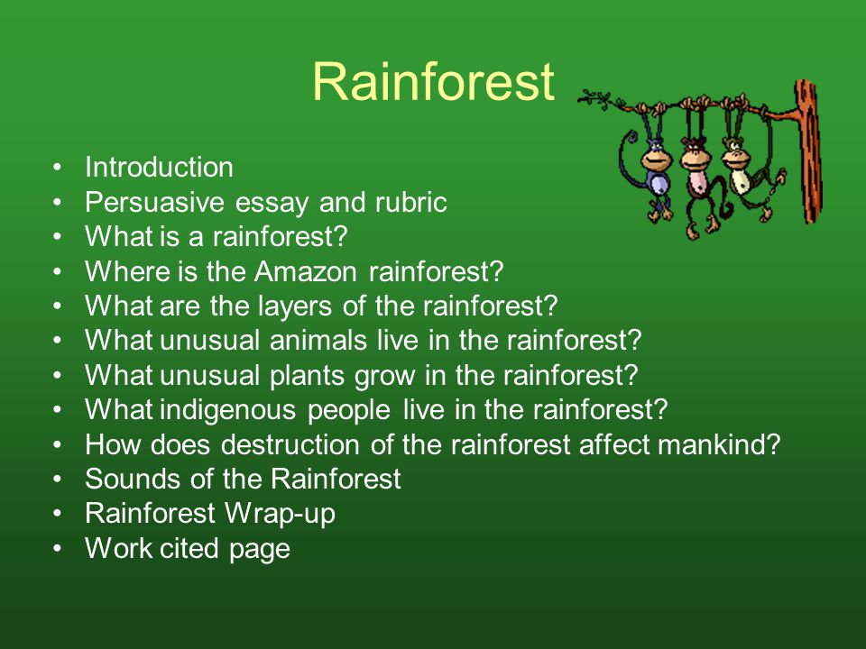 Rainforest Introduction Persuasive essay and rubric What is a rainforest? Where is the Amazon rainforest? What are the layers of the rainforest? What