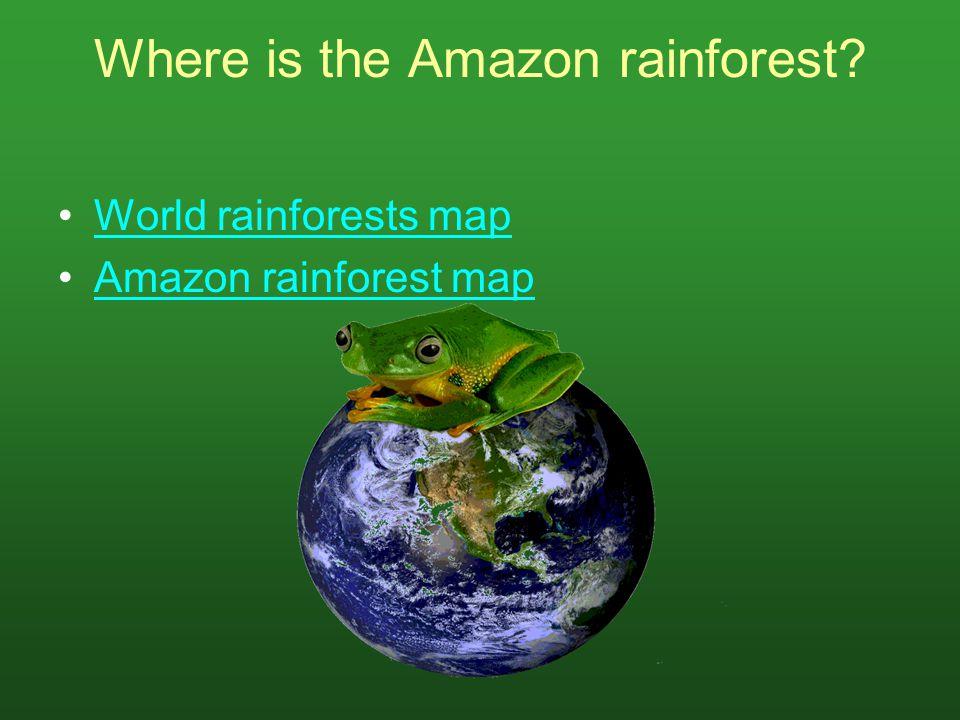 Where is the Amazon rainforest? World rainforests map Amazon rainforest map