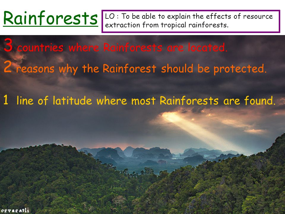 Rainforests 3 countries where Rainforests are located. 2 reasons why the Rainforest should be protected. 1 line of latitude where most Rainforests are