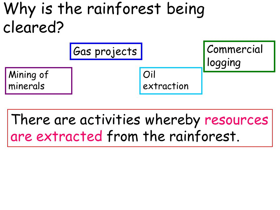 Why is the rainforest being cleared? Mining of minerals There are activities whereby resources are extracted from the rainforest. Gas projects Oil ext