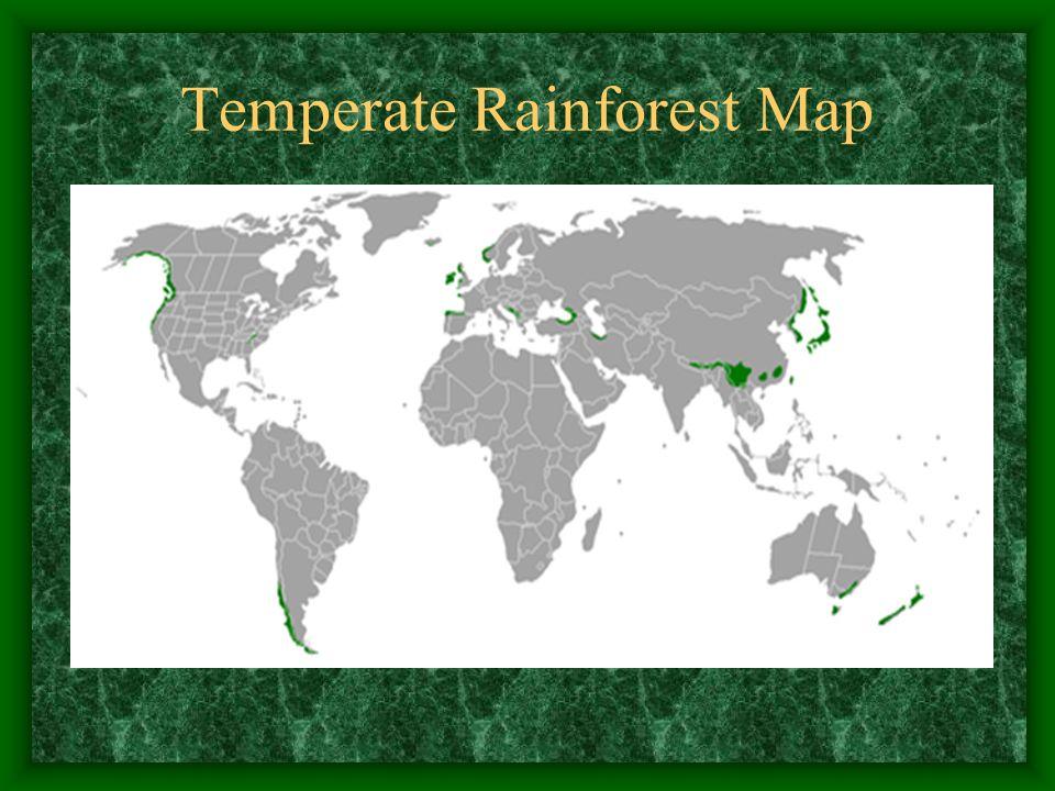 Temperate Rainforest Map