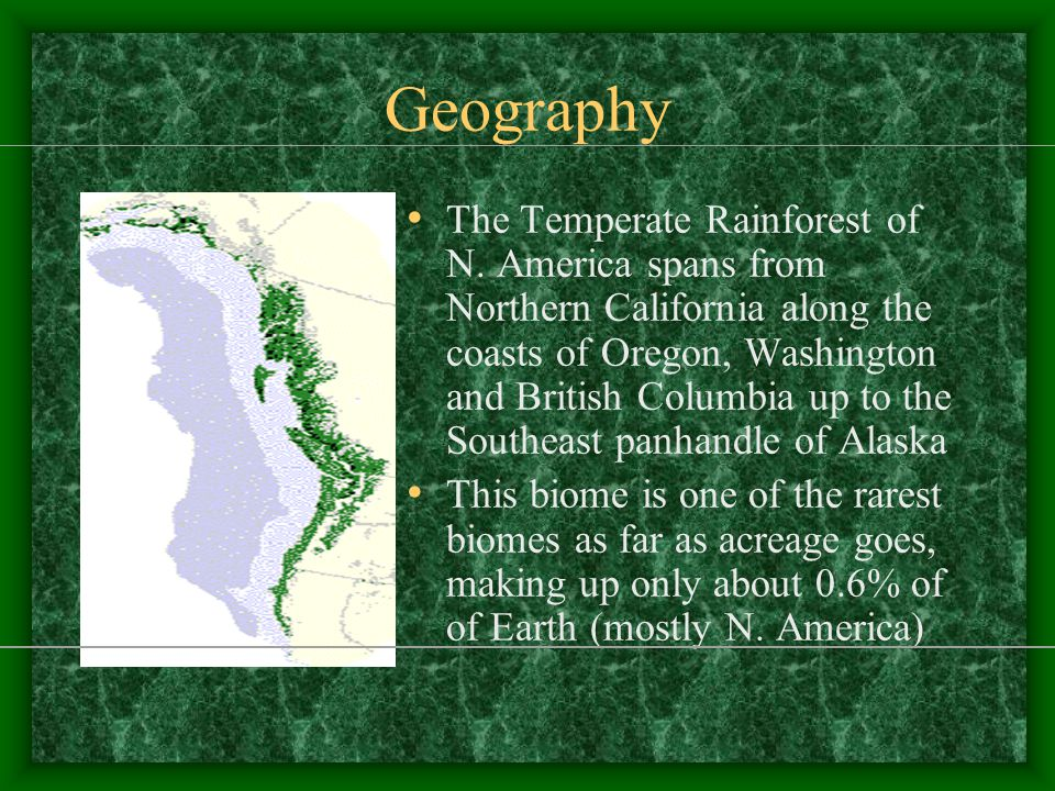 Climate and Geography Basic characteristics/requirements for a temperate rainforest: –Proximity to coast –Presence of coastal mountains –Minimal seasonal temperature variations (cool summers, mild winters) –Lots of precipitation (hence the title 'rainforest')