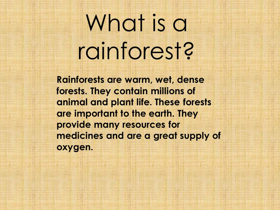 What is a rainforest? Rainforests are warm, wet, dense forests. They contain millions of animal and plant life. These forests are important to the ear