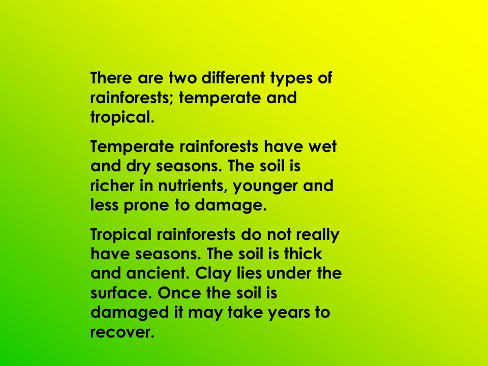 There are two different types of rainforests; temperate and tropical. Temperate rainforests have wet and dry seasons. The soil is richer in nutrients,