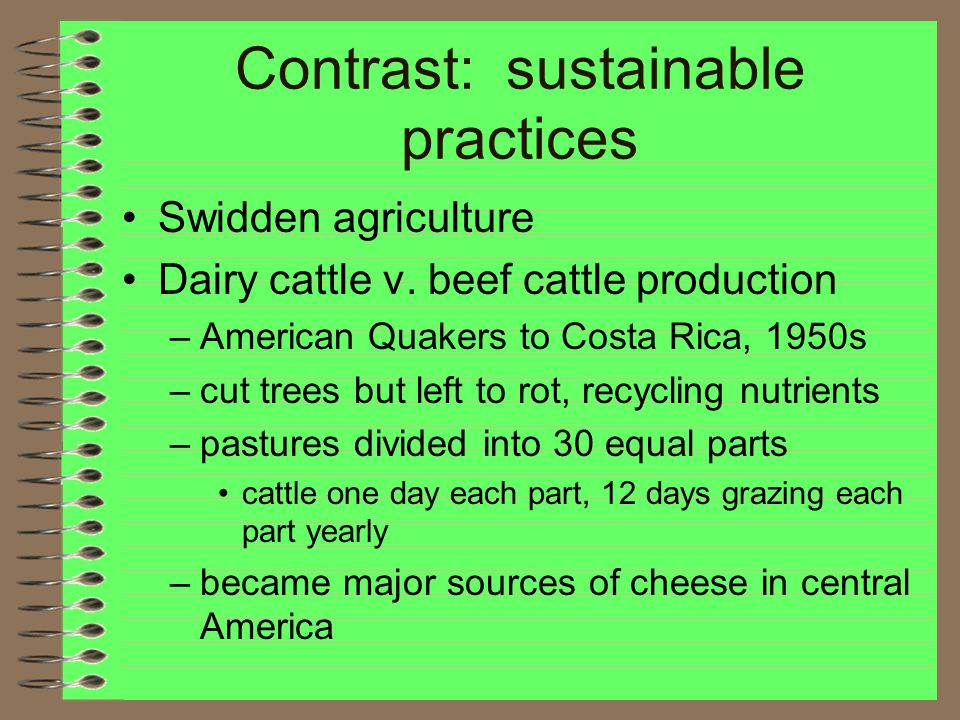 Contrast: sustainable practices Swidden agriculture Dairy cattle v.