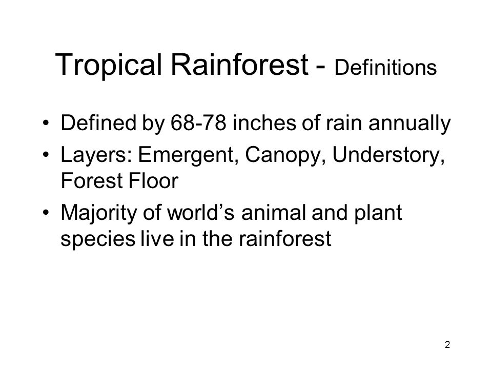 23 Math, Science, and Social Studies - Five Senses of the Rainforest Sight - pictures Hearing - recording of the rainforest Smell - cinnamon, vanilla, etc Touch - leaves, branches, animal fur Taste - Vanilla, chicle, etc.
