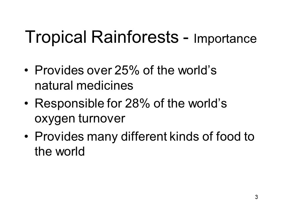 4 Tropical Rainforests - Importance to the Children of MN Direct correlation to the forests of MN Learn about the world around them Produce responsible global children Understand where their food originates