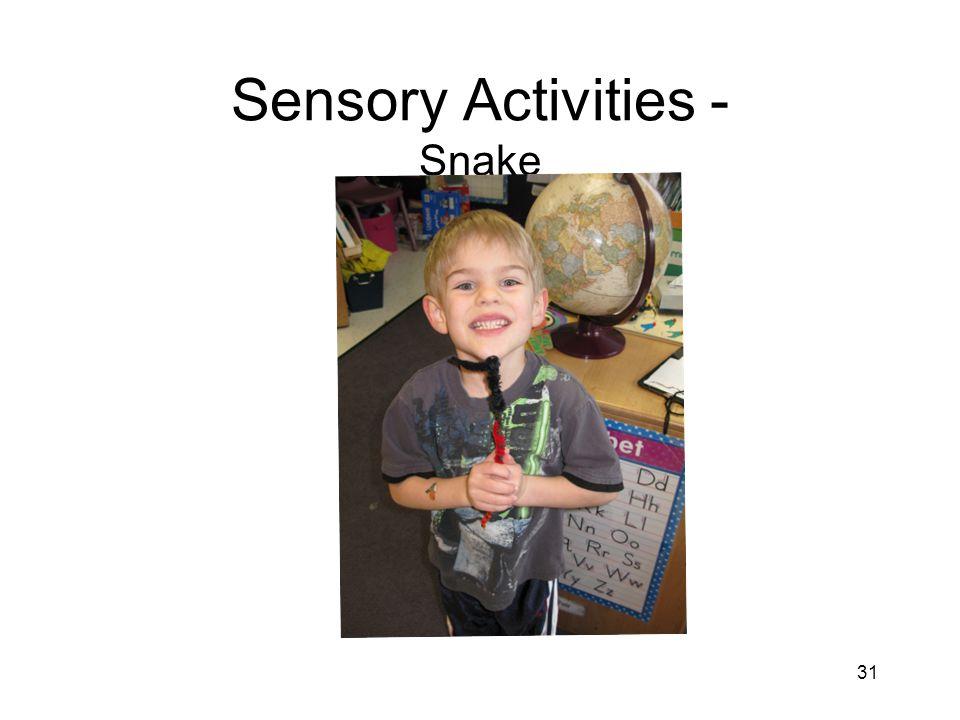 31 Sensory Activities - Snake