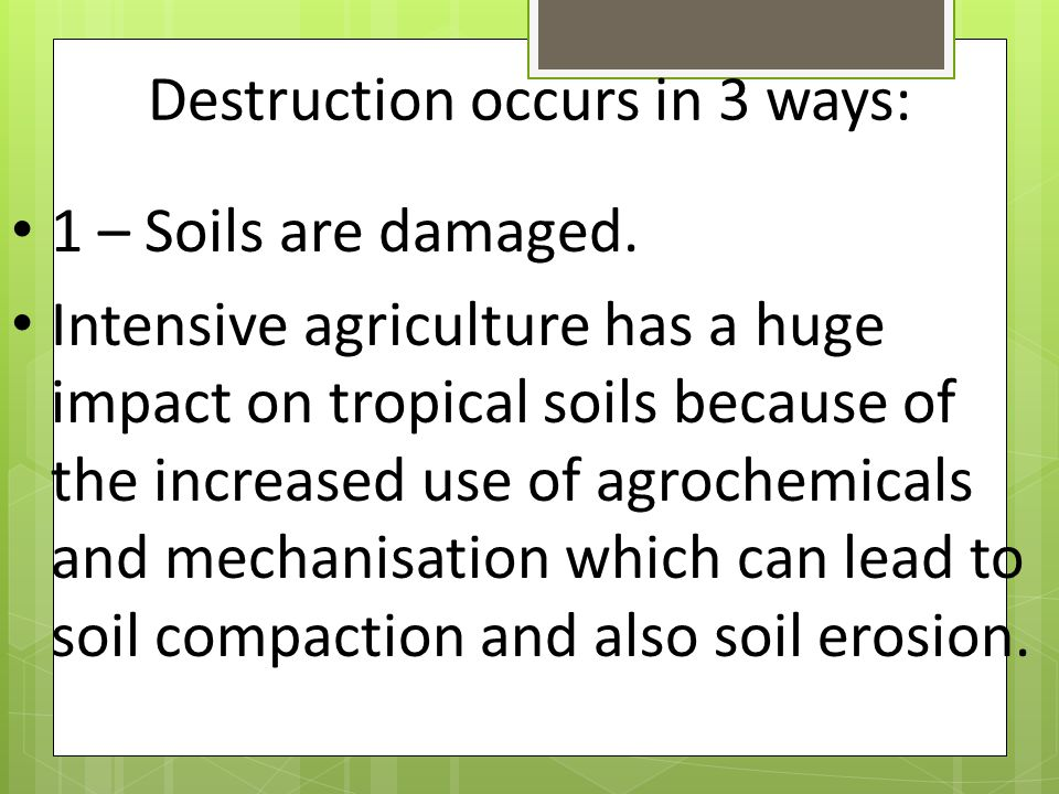 Destruction occurs in 3 ways: 1 – Soils are damaged. Intensive agriculture has a huge impact on tropical soils because of the increased use of agroche