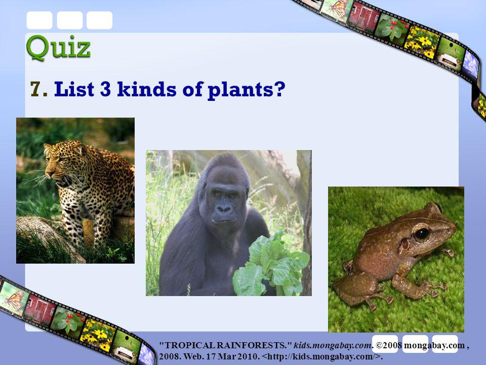 7. List 3 kinds of plants?