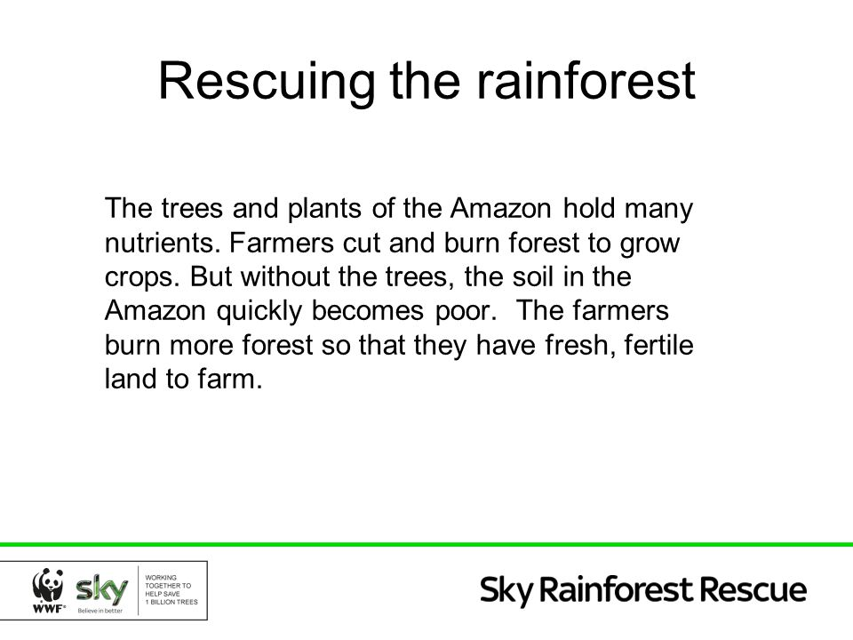 Rescuing the rainforest The trees and plants of the Amazon hold many nutrients. Farmers cut and burn forest to grow crops. But without the trees, the