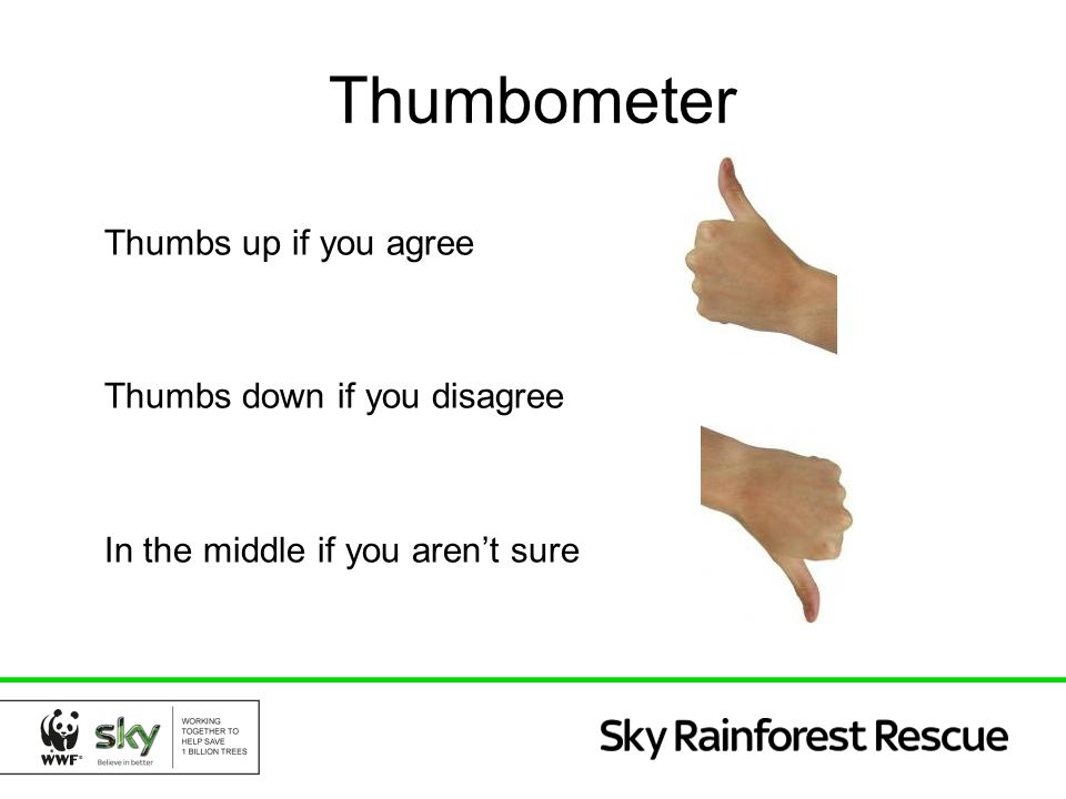 Thumbometer Thumbs up if you agree Thumbs down if you disagree In the middle if you aren't sure