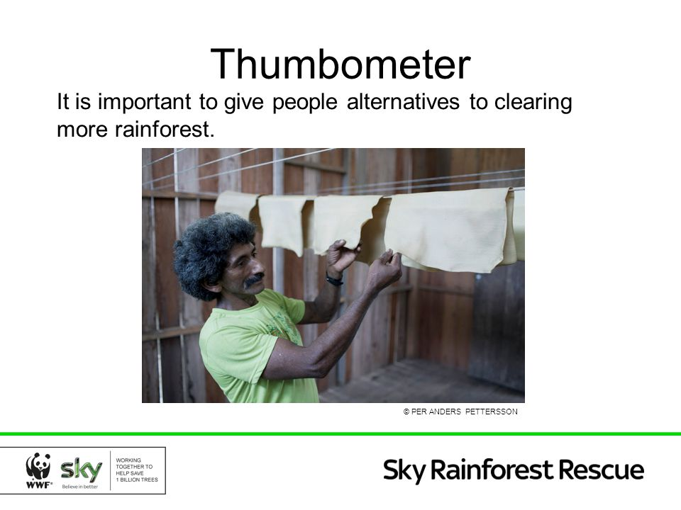 Thumbometer It is important to give people alternatives to clearing more rainforest. © PER ANDERS PETTERSSON