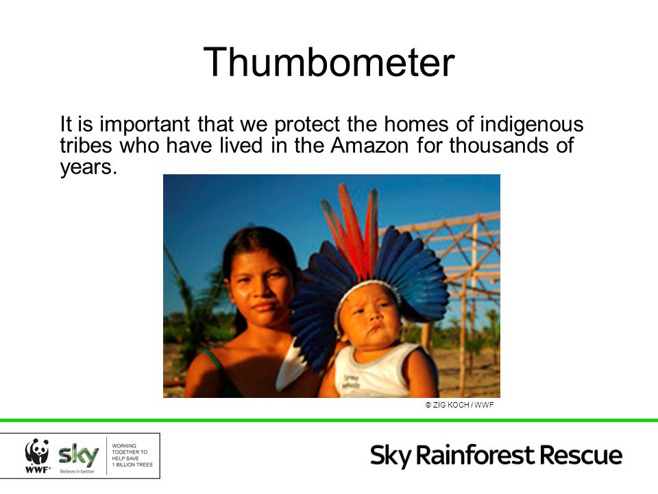 Thumbometer It is important that we protect the homes of indigenous tribes who have lived in the Amazon for thousands of years. © ZIG KOCH / WWF