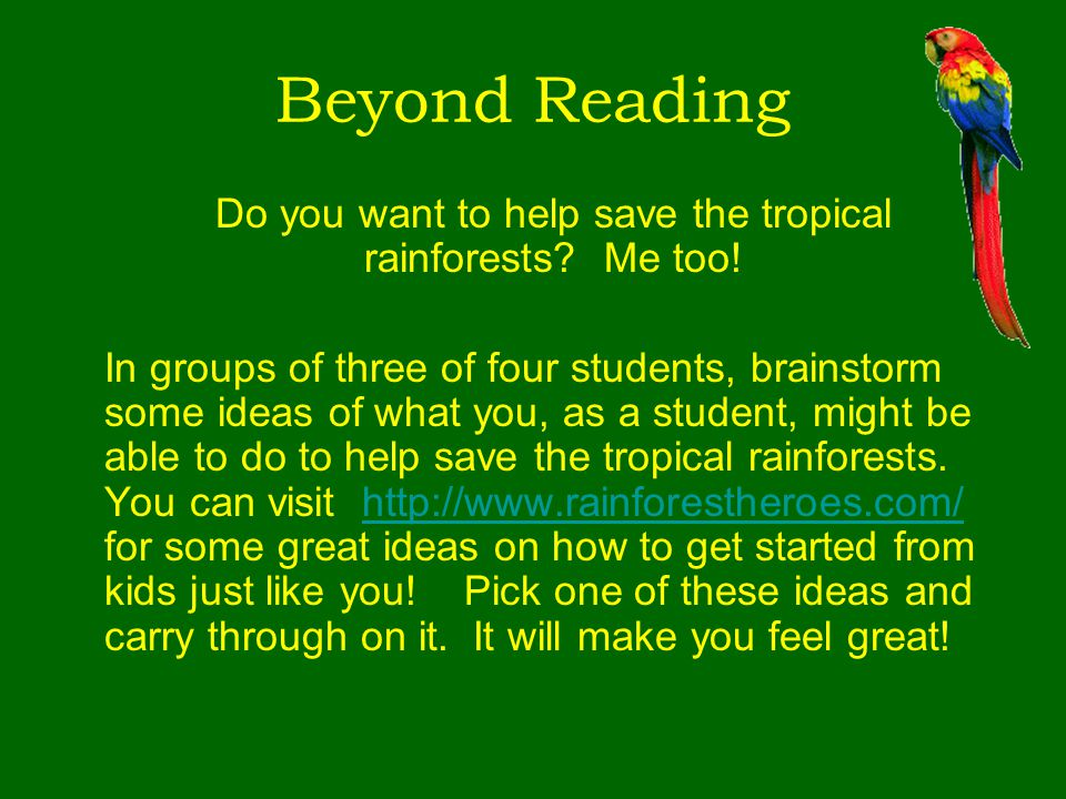 Beyond Reading Do you want to help save the tropical rainforests? Me too! In groups of three of four students, brainstorm some ideas of what you, as a