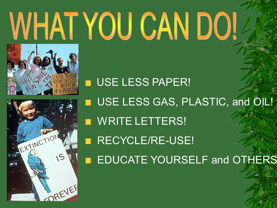 USE LESS PAPER! USE LESS GAS, PLASTIC, and OIL! WRITE LETTERS! RECYCLE/RE-USE! EDUCATE YOURSELF and OTHERS!