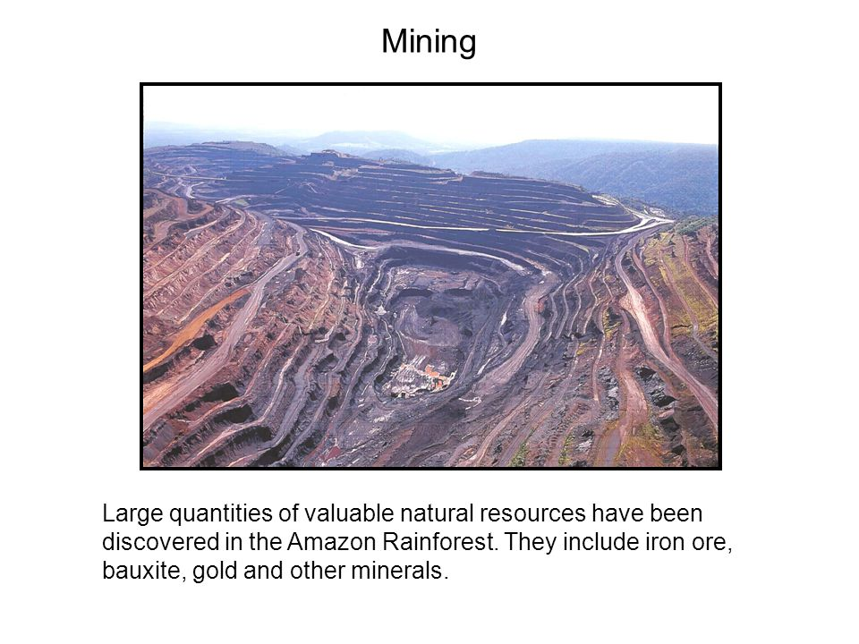Mining Large quantities of valuable natural resources have been discovered in the Amazon Rainforest.