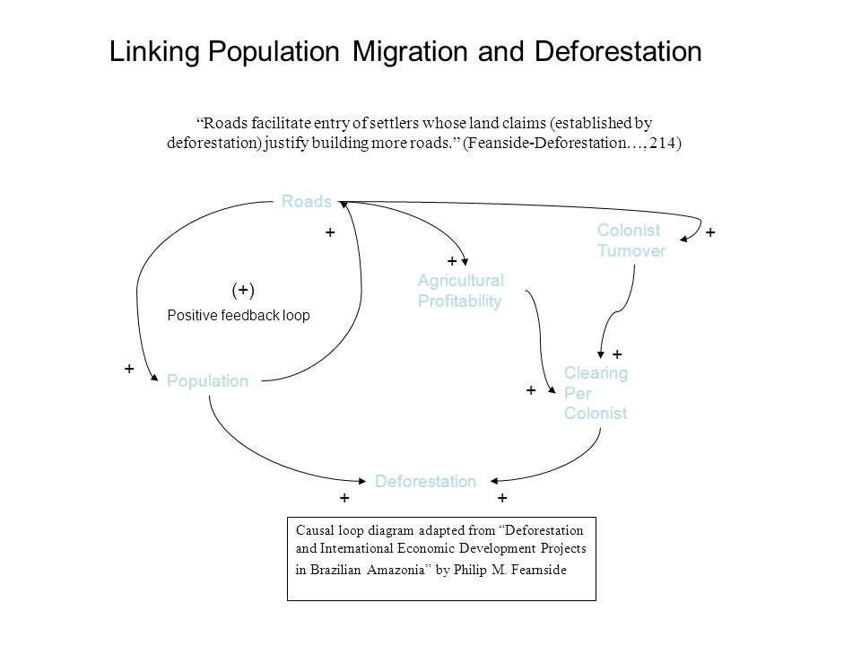 Roads Population Agricultural Profitability Colonist Turnover Deforestation Clearing Per Colonist (+) Positive feedback loop + + ++ + + + + Causal loop diagram adapted from Deforestation and International Economic Development Projects in Brazilian Amazonia by Philip M.