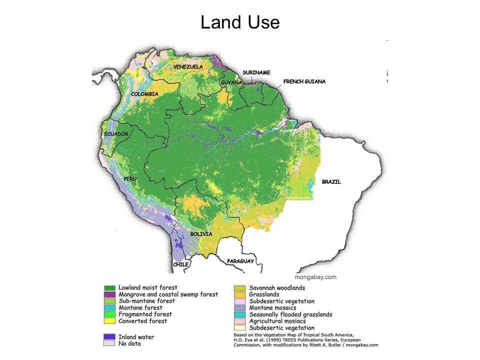 Deforestation: Facts and Figures Since 1970 roughly 825,000 km² of rainforest have been cleared (15% of total). Deforestation has slowed in recent yea