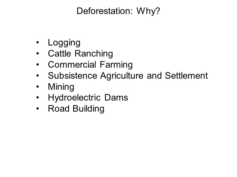 Deforestation: Why.