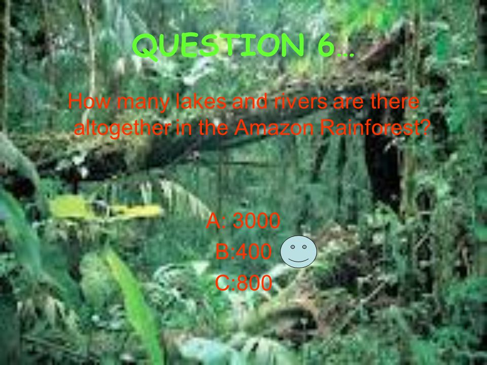 QUESTION 6… How many lakes and rivers are there altogether in the Amazon Rainforest? A: 3000 B:400 C:800