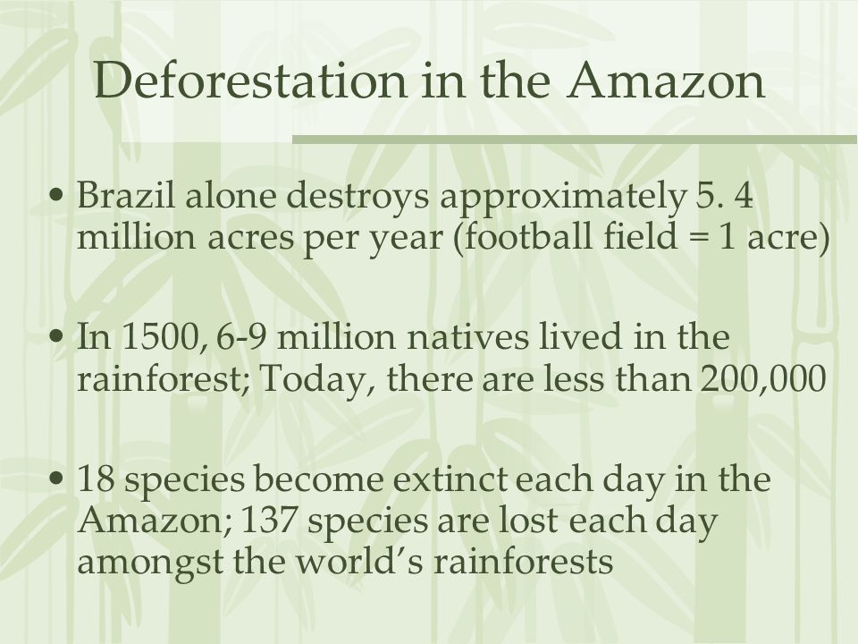 Deforestation in the Amazon Brazil alone destroys approximately 5. 4 million acres per year (football field = 1 acre) In 1500, 6-9 million natives liv