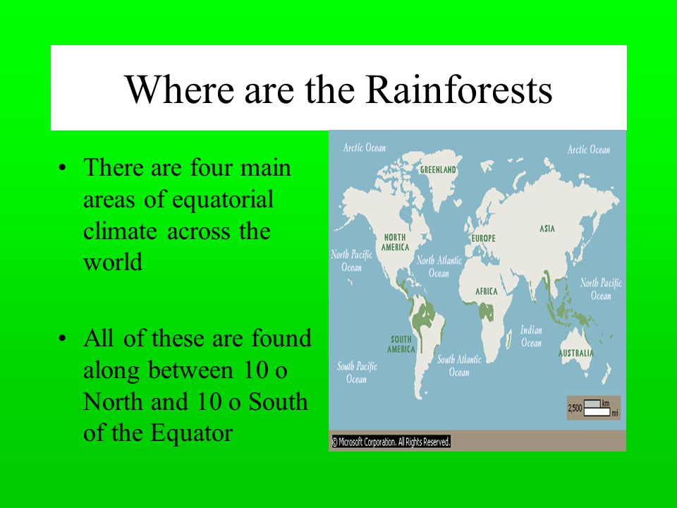 Where are the Rainforests There are four main areas of equatorial climate across the world All of these are found along between 10 o North and 10 o South of the Equator