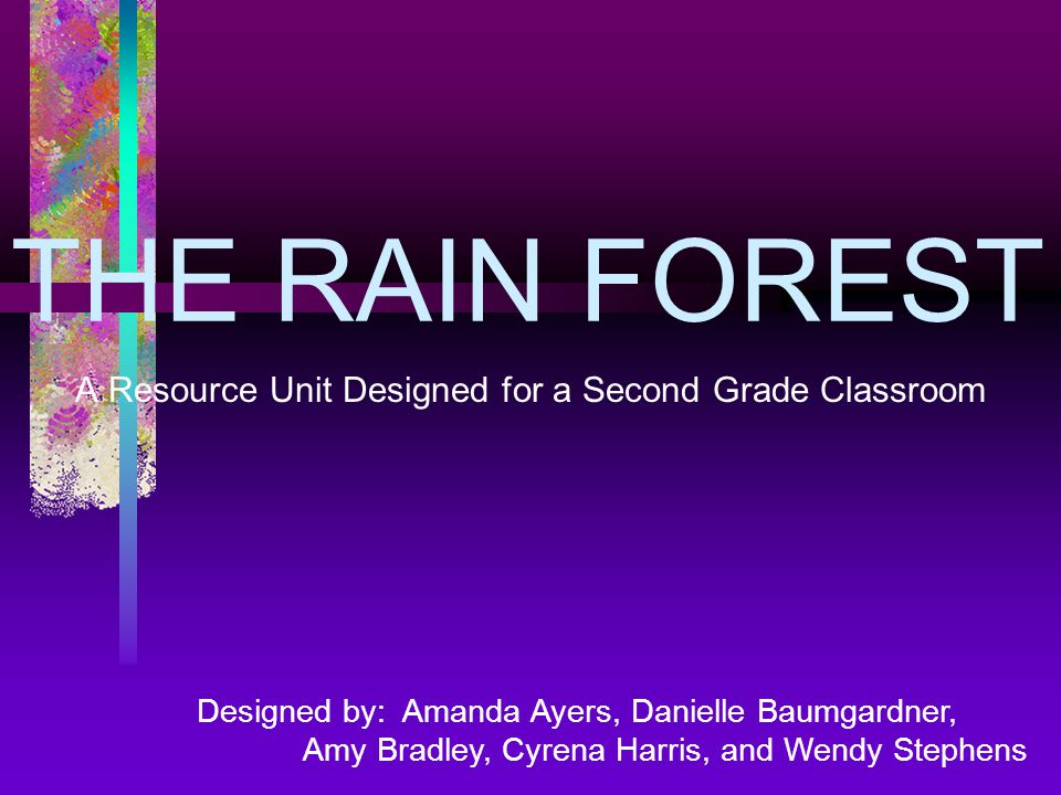 THE RAIN FOREST A Resource Unit Designed for a Second Grade Classroom Designed by: Amanda Ayers, Danielle Baumgardner, Amy Bradley, Cyrena Harris, and Wendy Stephens