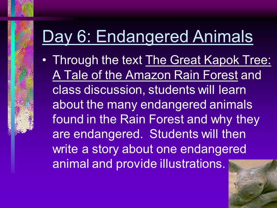 Day 6: Endangered Animals Through the text The Great Kapok Tree: A Tale of the Amazon Rain Forest and class discussion, students will learn about the many endangered animals found in the Rain Forest and why they are endangered.