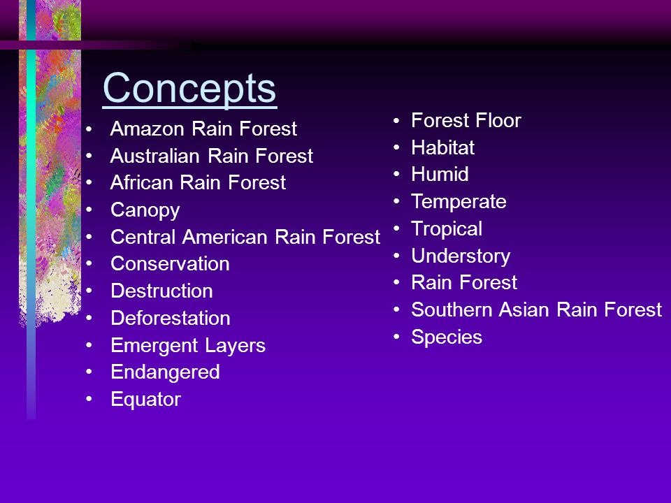 Concepts Amazon Rain Forest Australian Rain Forest African Rain Forest Canopy Central American Rain Forest Conservation Destruction Deforestation Emergent Layers Endangered Equator Forest Floor Habitat Humid Temperate Tropical Understory Rain Forest Southern Asian Rain Forest Species