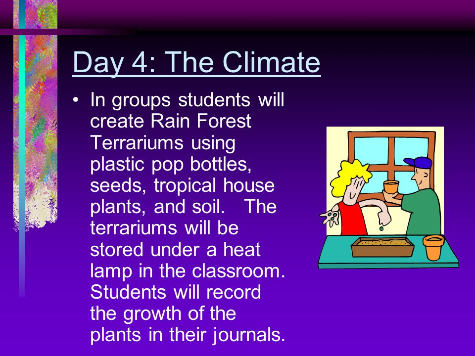 Day 4: The Climate In groups students will create Rain Forest Terrariums using plastic pop bottles, seeds, tropical house plants, and soil.