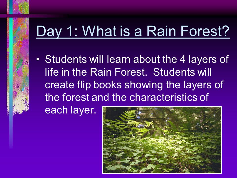 Day 1: What is a Rain Forest. Students will learn about the 4 layers of life in the Rain Forest.