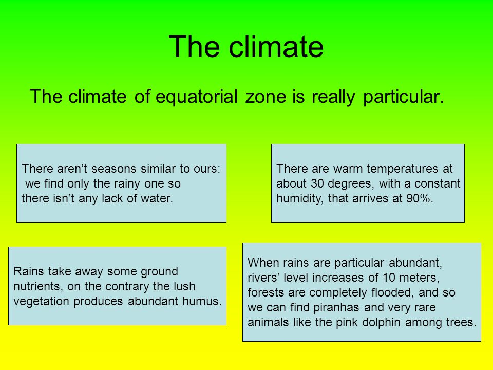 The climate The climate of equatorial zone is really particular.