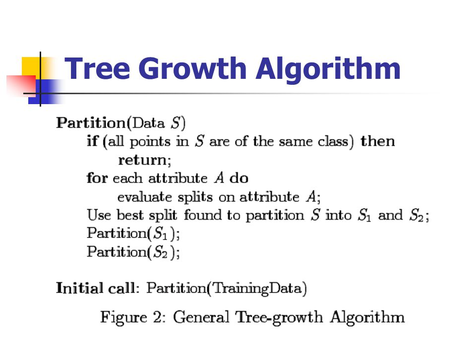 Tree Growth Algorithm