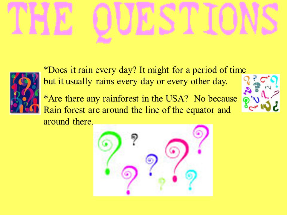 *Does it rain every day? It might for a period of time but it usually rains every day or every other day. *Are there any rainforest in the USA? No bec