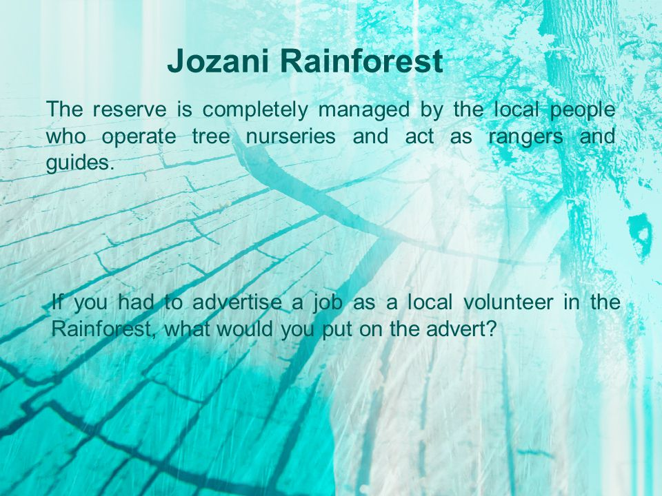 Jozani Rainforest The reserve is completely managed by the local people who operate tree nurseries and act as rangers and guides.