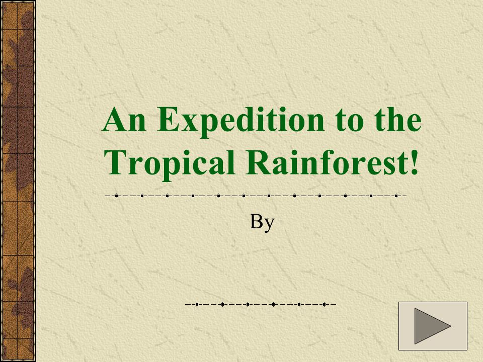 An Expedition to the Tropical Rainforest! By